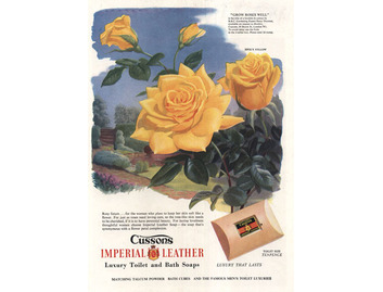 Cusson's Imperial Leather (BATH023)