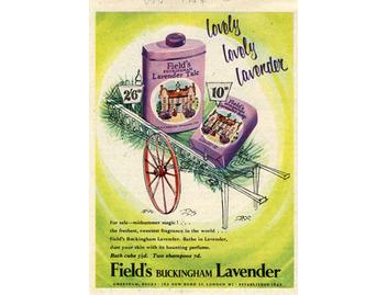Field's Buckingham Lavender (BATH035)