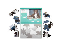 003A 13 Piece Jigsaw Sheep Dog